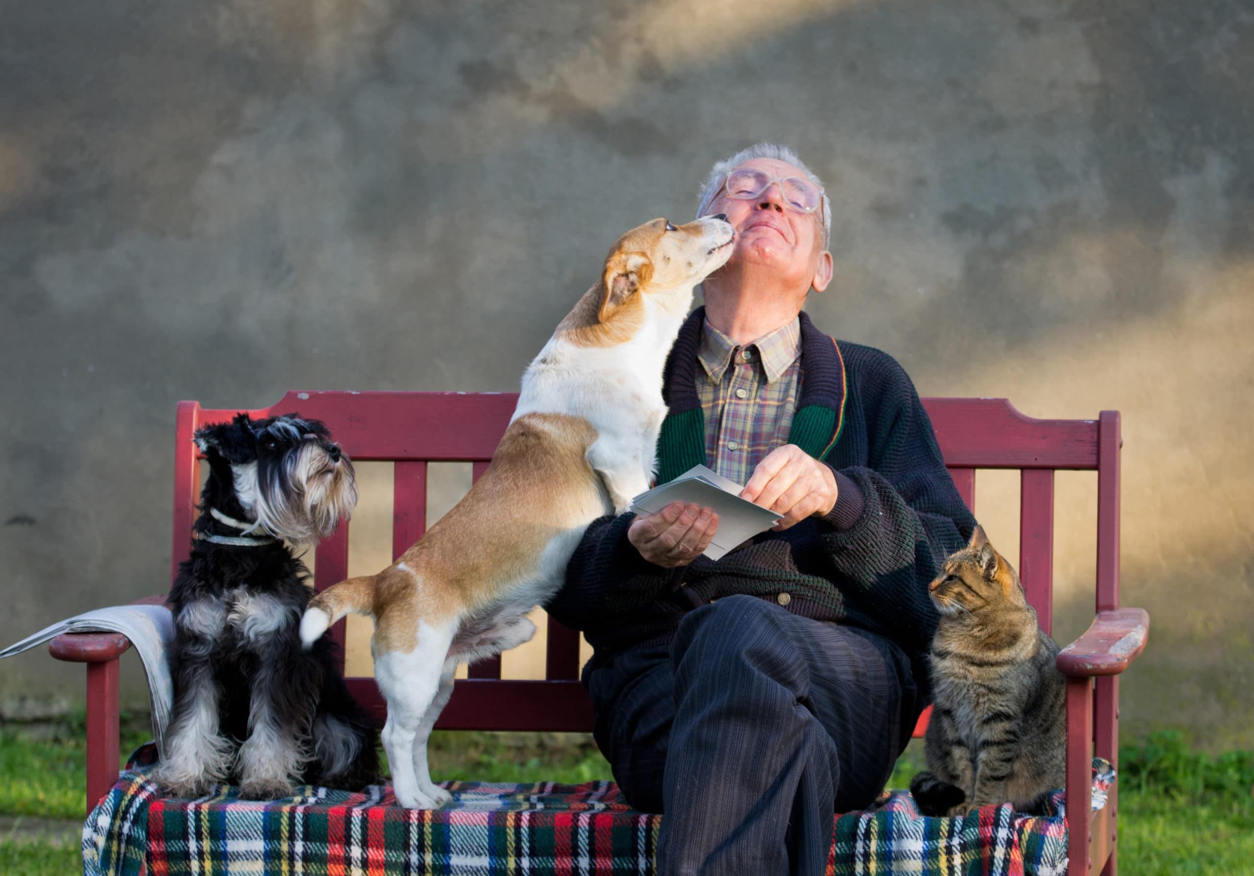 Trupanion Pet Insurance 2021   Compare Quotes