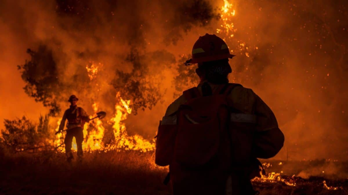 Does Homeowners Insurance Cover Wildfires? Guide to Homeowners Insurance and Wildfire Damage (2021)